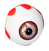 Replacement Eyeball Photo